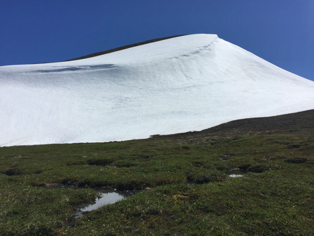 Despite the relatively little snowfall this past winter, there was still a fair amount of snow on the northern side of the summit. (Photo Credit E.A.)